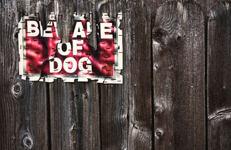 Guard Dogs and Colorado's Unlawful Ownership of a Dangerous Dog Statute