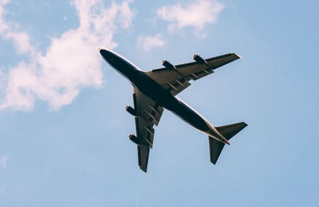 No More ESAs on Planes